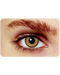 Hollywood Colorlenses Classic Brown
