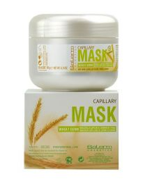 Salerm Capillary Hair Mask with Wheat Germ for dry hair 200 ml