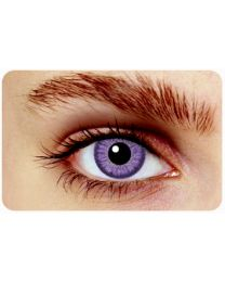Hollywood Colorlenses Classic Violet